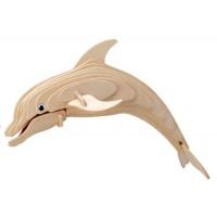 Flasknosad delfin